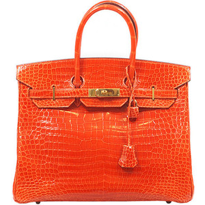 bright orange snakeskin hermes birkin handbag
