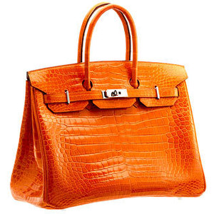 orange snakeskin hermes birkin handbag